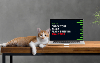 How to check your Alexa Flash Briefing Skill Analytics